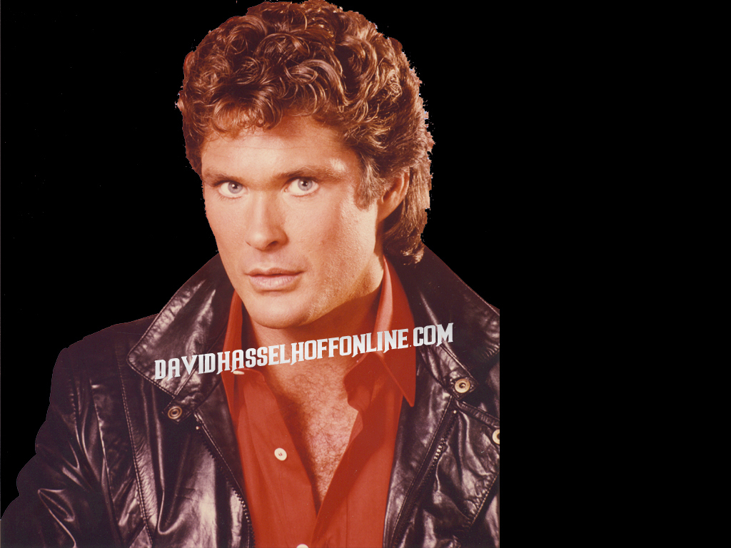 Stunning  > Hoff Space And My Space > Profile Layout Wallpaper And Backgrounds 1024 x 768 · 467 kB · jpeg