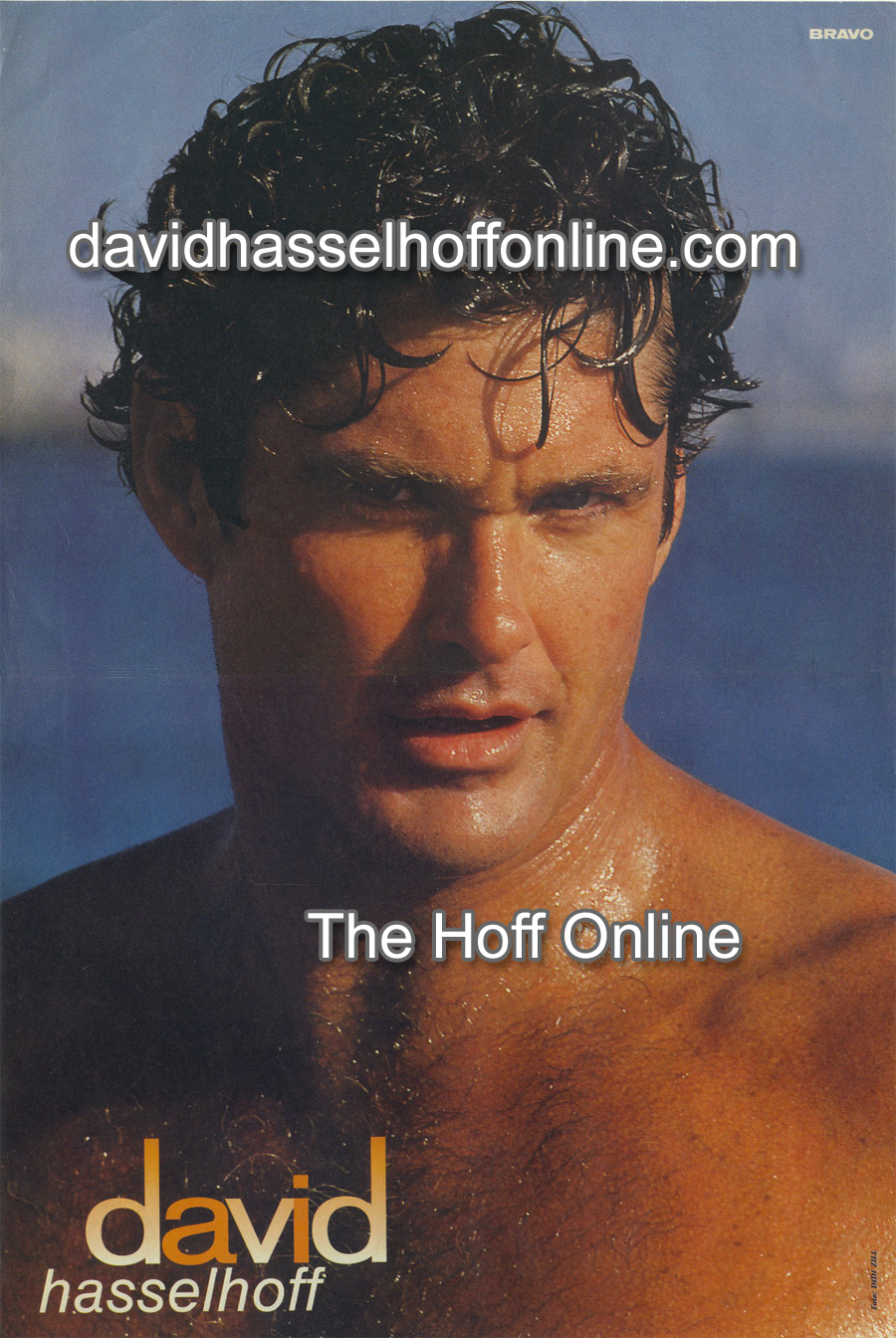 David Hasselhoff - For You