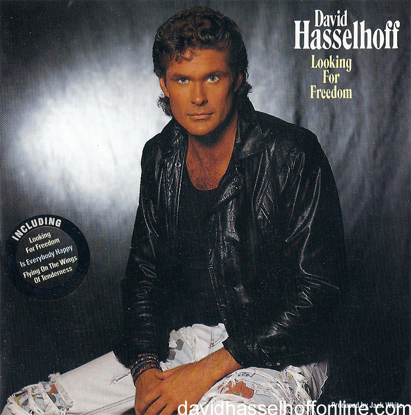 David hasselhoff berlin wall song lyrics images and photo galleries