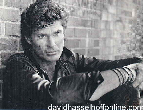 Looking for freedom the official david hasselhoff website