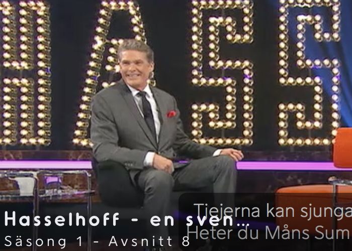 <b>en svensk talkshow - Watch Episode 8</b>